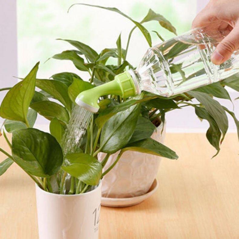 как часто можно поливать фитоспорином комнатные цветы